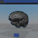 3D Builder: show 3D model of brain segmented from MRI / MRT image