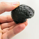 Combined brain halves, 3D printed without support structures
