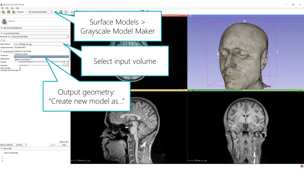 Grayscale Model Maker in 3D Slicer